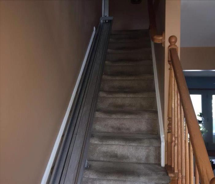 Carpet Cleaning after a Fire Damage Before