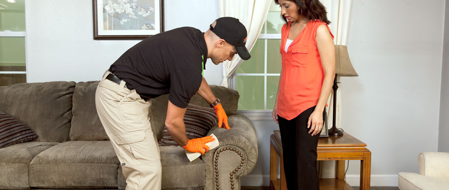 Whitehall, PA carpet upholstery cleaning